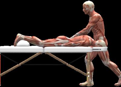 Corso base Massaggio Decontratturante